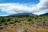 Mt st helens — Foto de Stock