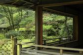 View of Garden — Stock Photo