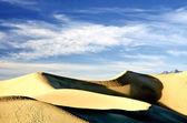 Crescent Sand Dune — Stok fotoğraf
