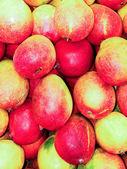 Mangoes — Stok fotoğraf
