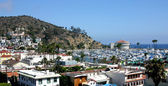 Catalina Island Harbor — Stockfoto