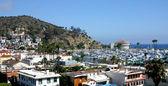 Catalina Island Harbor — Stock fotografie