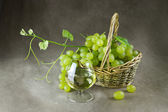 Still life with wine and grapes — Stockfoto