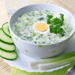 Summer cold soup with vegetables — Stock Photo #12386260