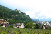 Panoramic view of the Principality of Liechtenstein — Stock Photo