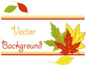 Bright pattern with autumn leaves — Stock Vector