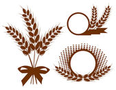 Set with ears of wheat — Stock Vector