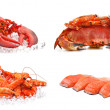 Stock Photo: Set of sefood on white background. Crab, shrimps, lobster, s
