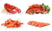 Conjunto de frutos do mar, sobre um fundo branco. caranguejo, camarão, lagosta, s — Foto Stock