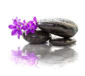 Zen Stones with purple flowers — Stock Photo