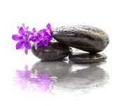 Zen Stones with purple flowers — Stock Photo