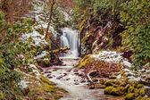 Forest waterfall in Baden-Baden. Europe, Germany. — Stock Photo