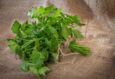 Sprig of parsley — Stock fotografie
