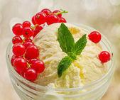 Vanilla ice cream with red currants — Stock Photo