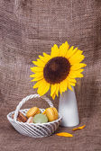 French macarons with yellow sunflowers — Stockfoto