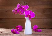 Pink orchid on a rustic background — Stock Photo