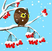 Winter image with red berries and owl — Stock Vector