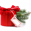 Foto Stock: Red gift with Christmas tree branch. Isolate on white background