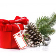 Red gift with Christmas tree branch. Isolate on white background — Stok Fotoğraf #37321933