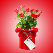 Red gift with a red bow and roses. — Stock Photo