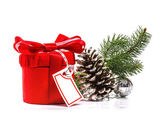 Red gift with Christmas tree branch. Isolate on white background — Stock Photo
