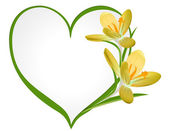Yellow crocus with a frame in the shape of heart. — Vector de stock