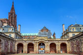 Widok pałacu rohan katedra postaci strasburg. francja. europa. — Zdjęcie stockowe