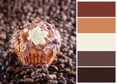 Chocolate muffin  with complimentary swatches. — Stock Photo