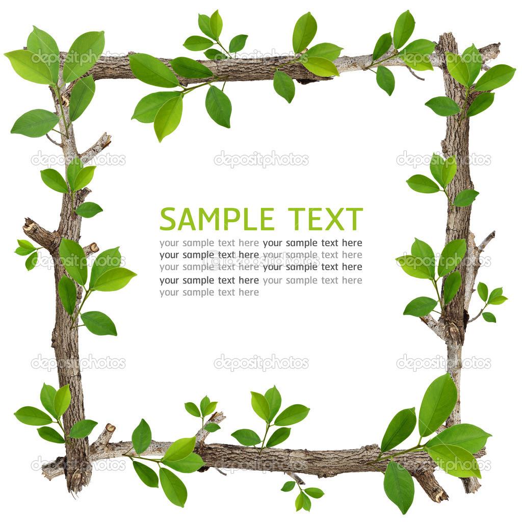 Rama y hoja verde marco foto de stock graphixmania - Marcos para plantas ...