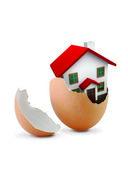 Hus i ägg — Stockfoto
