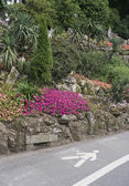 Pedestrian lane and rock garden — Stock Photo