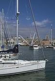 Boats docked at harbor, Genoa — Stock Photo