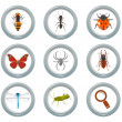 Insect icons set — Stock Vector #18972323