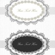 Vintage lace borders set — Stock Vector