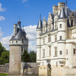 Chenonceau Castle in the Loire Valley — Foto de Stock