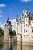 Chenonceau Castle in the Loire Valley — Stok fotoğraf