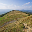 Stock Photo: Landscape in Carpathians