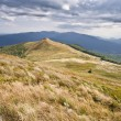Carpathian mountains — Stock Photo