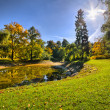 Park with pond during autumn — Foto Stock