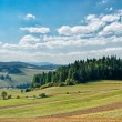 Panoramic landscape in Pieniny mountains — Stock Photo