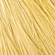 Fibers of wood — Stock Photo