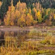 Pond during the autumn — Stock Photo