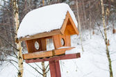 Bird feeder — Foto de Stock