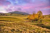 Ranní krajina s fialovými mraky na obloze — Stock fotografie