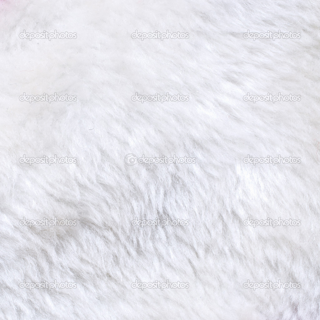 White Fur Texture | www.imgkid.com - The Image Kid Has It!