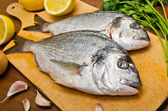Gilthead fishes ready to preparation — Stock Photo