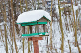 Bird feeder — Stock Photo