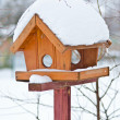 Bird feeder - Stock Photo