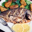Stock Photo: Roasted gilthead fish