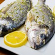 Stock Photo: Marinated gilthead fishes
